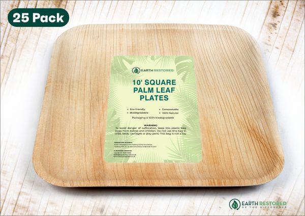10inch Square Palm Leaf Plates